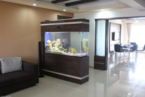 Designed & Installed by TropiCo Aqua,Mumbai for one of it's clients